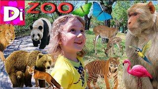 ЗООПАРК для самых маленьких! Учим Животных в Зоопарке. Влог Леди Диана в зоопарке. Зоопарк для детей