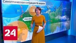 """""""Погода 24"""": В Москве рекордное потепление - Россия 24"""