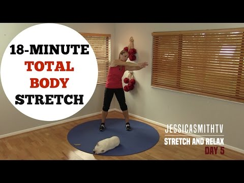 18 Minute Full Body Stretching Flexibility Routine - No Equipment For All Levels