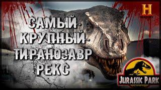 Музейные тайны 1 сезон 6 выпуск [Тиранозавр Рекс]