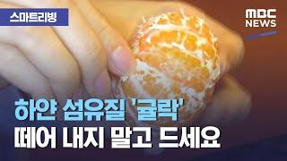 [스마트 리빙] 귤 알맹이에 붙은 하얀 섬유질 '귤락' 떼어 내지 말고 드세요 (2021.01.25/뉴스투데이/MBC)