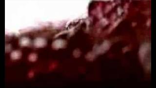 DAF - Der sheriff (VNV Nation edit)