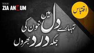 Mujhey Masihai ka Hunar Nahi Ata | Very Sad Emotional Urdu Lines | Zia Anjum