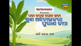 Paka Kambala Pota Chata, Suna Abolakar Purana Katha   17 Oct 19   TarangTV