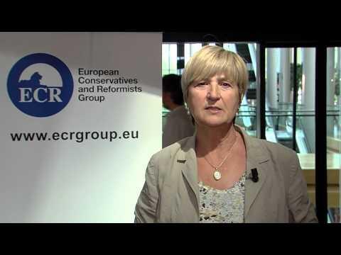 Ruža Tomašić (ECR) - #mojaMEPgodina