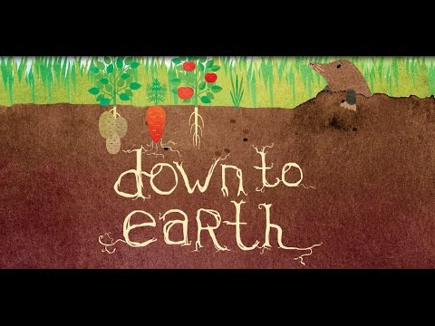 Down To Earth: a PMLD production