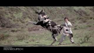 Kung Pow Enter the Fist Movie Clip   Cow Fight 2002 HD