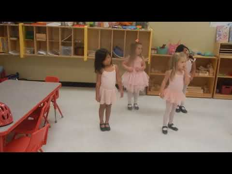 Stepping Stone Montessori School, Suwanee Tap & Ballet
