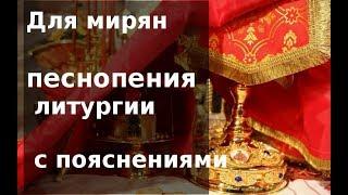 Учимся понимать богослужение. Избранные песнопения Божественной литургии с пояснениями