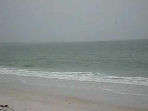 Orlando - Seawater 1