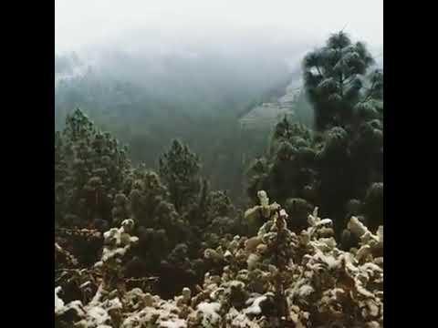 Snowfall 2014 Devdhar, Seraj, MANDI, Himachal Pradesh
