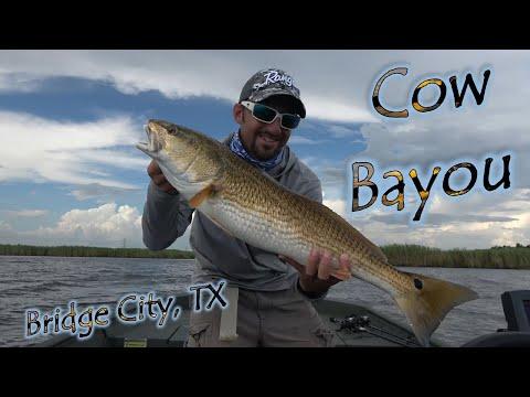 Cow Bayou Bridge City, TX