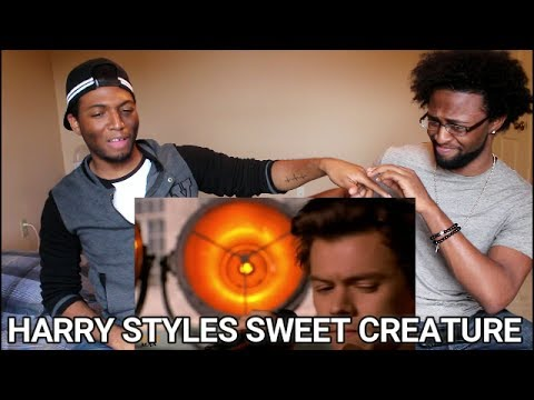 Harry Styles performs 'Sweet Creature' (LIVE) (REACTION)