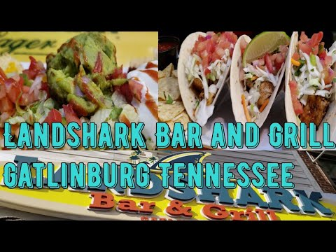 LandShark Bar and Grill Review Gatlinburg Tennessee 2019