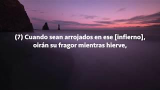 Video Sura Al-Mulk, Subtítulos Español, Raad Al Kurdi download MP3, 3GP, MP4, WEBM, AVI, FLV Agustus 2019