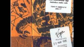 Massive Attack- Protection (the Eno mix)