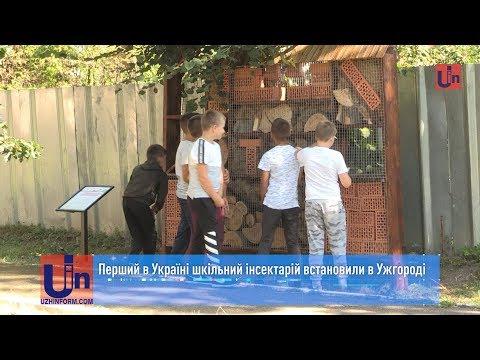 Перший в Україні шкільний інсектарій встановили в Ужгороді