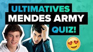 Wenn du ein richtiger Shawn Mendes Fan bist, musst du dieses Quiz bestehen | Digster Pop