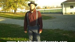 Amish Living Style and How Their Transportation Will Always Survive in Any Economic Disaster