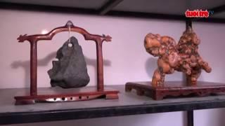 Triển lãm đá cảnh phục vụ Đại hội nhiệm kỳ 1