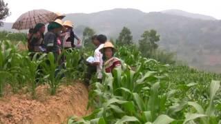 Farmers Club Yuan Yang China