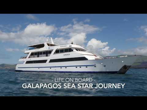 Galapagos Sea Star Journey | Expedition cruises in the Galapagos Islands