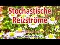 stochastische Reizströme
