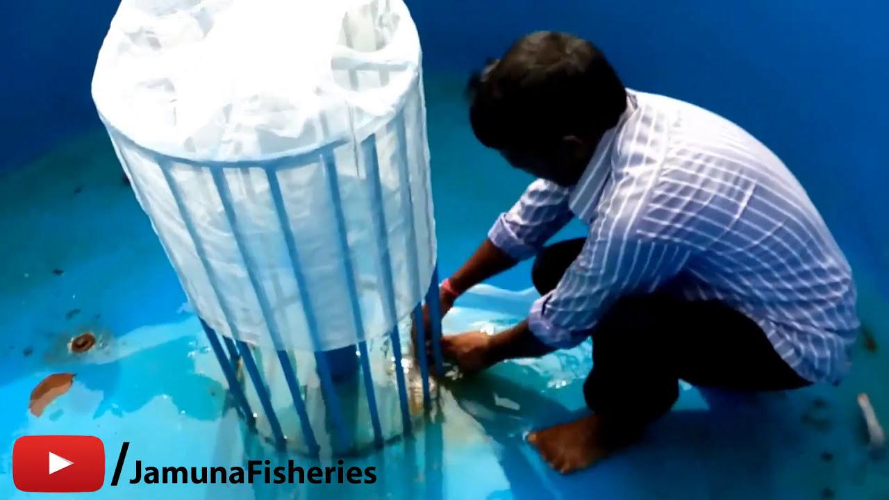 Mini(Portable) Fish Farming Plant At Musabani , Jharkhand  Jamuna Fisheries  11:29 HD
