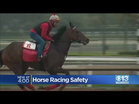Horse Racing Safety At The California State Fair