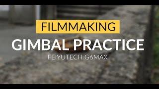 Gimbal Movements | FeiyuTech G6 Max |  Gimbal Practice
