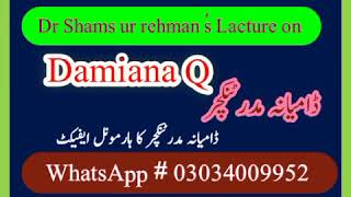 Download Video/Audio Search for Damiana Q in urdu , convert Damiana