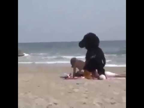 Bikini Contest! Very Hot! HD! Beautiful GirlKaynak: YouTube · Süre: 41 saniye
