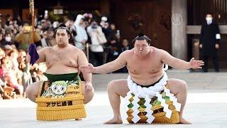 Лучшие борцы сумо совершили новогодний ритуал (новости)