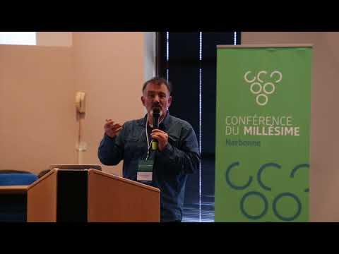 2015 Narbonne Conference du Millesime - Mûri Une Servie Bâle au Sein D'une Vendange Désynchronisée