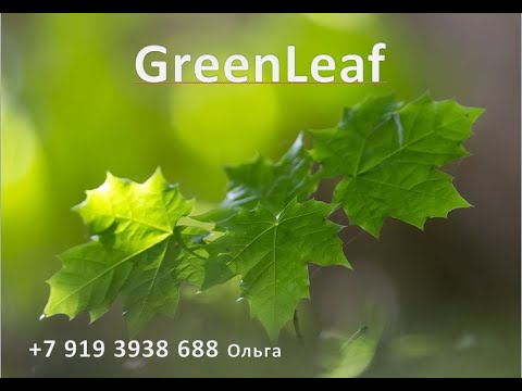 Бизнес план GreenLeaf