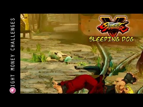 street fighter v sleeping dog