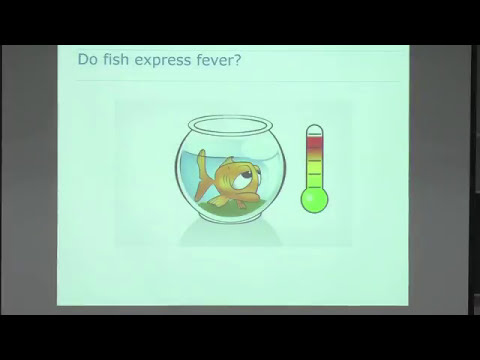 Fish Health And Immunology: Lessons From Infectious Agents
