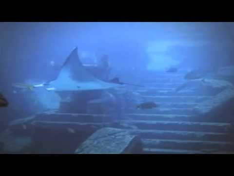 Ruins Discovered in Bahamas may be Atlantis