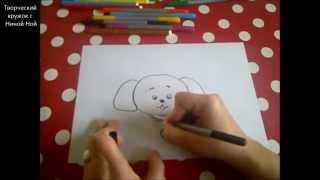 КАК НАРИСОВАТЬ ИГРУШЕЧНОГО ЩЕНКА (очень просто, для начинающих)(Здравствуйте! Предлагаю вашему вниманию видеоролик, где я показываю, как очень просто нарисовать СОБАКУ...., 2014-12-15T08:07:39.000Z)