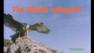 "Look and Read - Sky Hunter Episodes ""The Welsh Telegram""1978 BBC