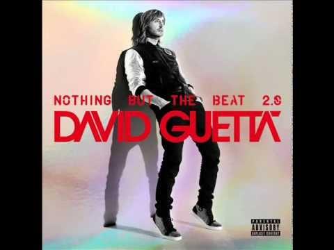 David Guetta Ft. Ne-yo & Akon - Work Hard Play Hard Instrumental