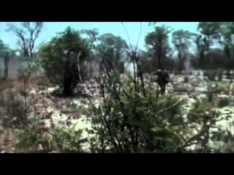 2 of 3 South African Armed Forces SWA Angola Bush War (with English subtitles)