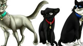 "Коты Воители: Бич и Звездоцап,. """"""""Закон стаи""""""(Чит.Описание)"
