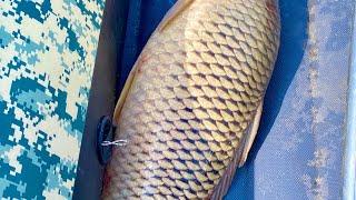 НИКТО НЕ ВЕРИЛ ЧТО ТАК МОЖНО ЛОВИТЬ рыбалка 48 часов