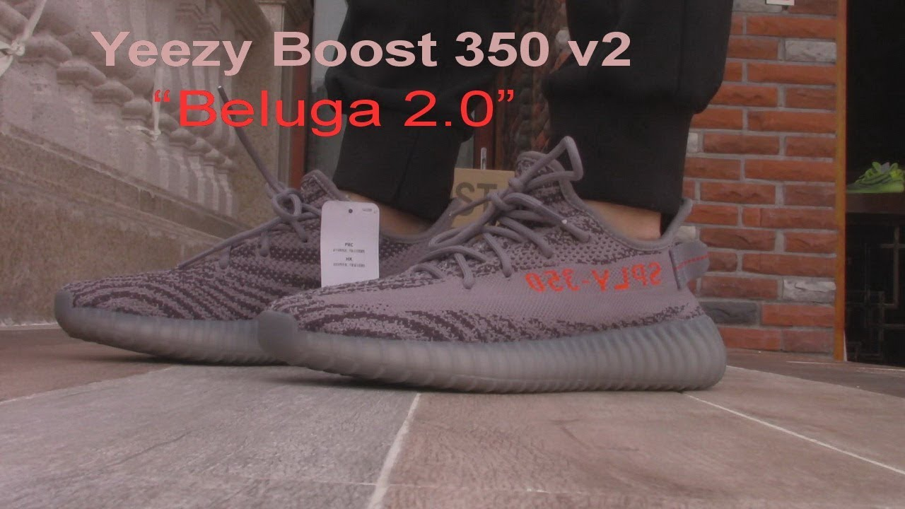 """76e6d763aac Adidas Yeezy Boost 350 v2 """"Beluga 2.0"""" on foot Review - YouTube"""