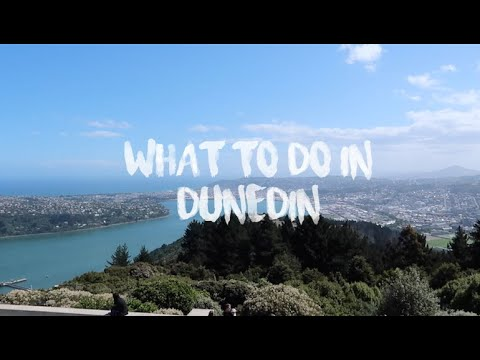 TOP THINGS TO DO IN DUNEDIN NZ