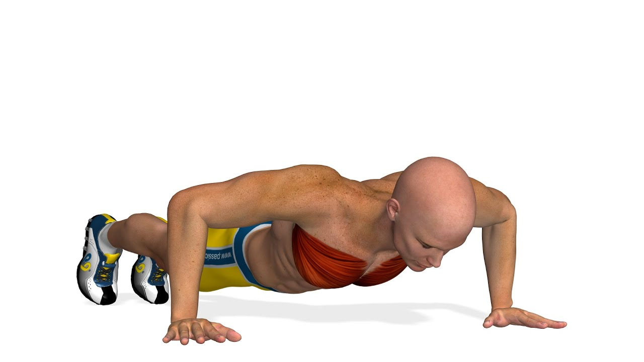 Chest Workout: Push-Ups - YouTube