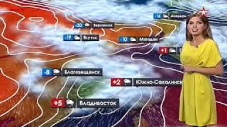 Погода сегодня, завтра, видео прогноз погоды на 3 дня 14.11.2016(, 2016-11-13T23:32:23.000Z)