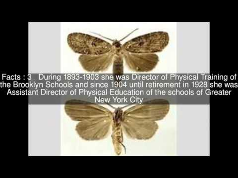 Jessie H. Bancroft Top  #7 Facts