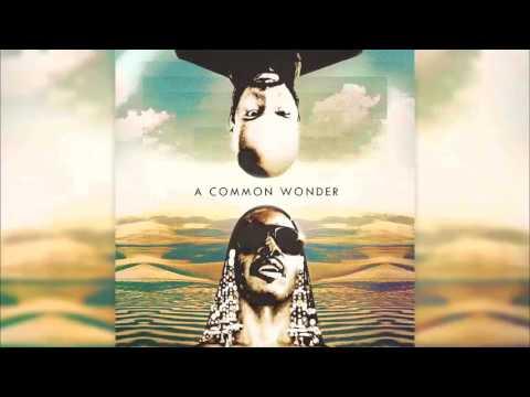 A Common Wonder (Full Album) [Prod. Amerigo Gazaway]